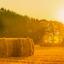 Sydsjællændere vil bygge milliardstort biobrændselsanlæg